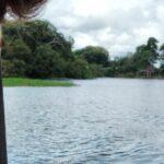 Primeiros dias no Amazonas